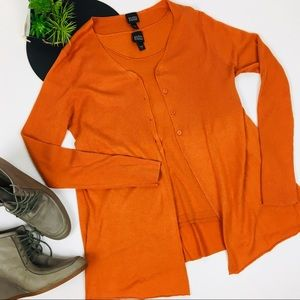 Eileen Fisher Silk Cashmere Twin Set Size Large